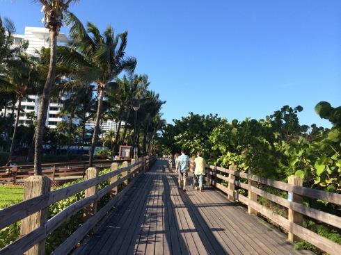 Miami - Fontainebleau - 24