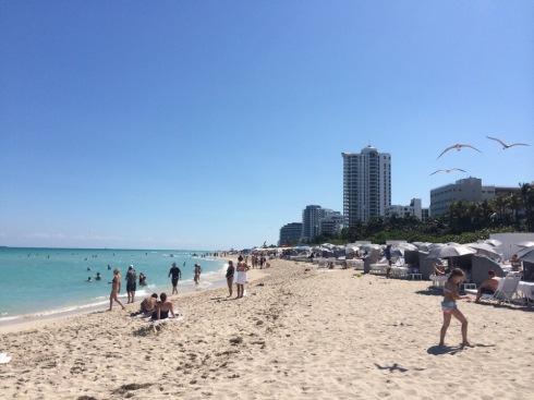Miami - Fontainebleu - 64