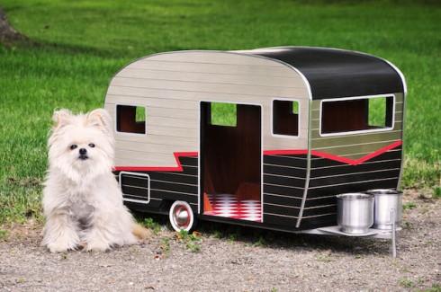 54eba39b71762_-_dog-camper-1-de-50831860
