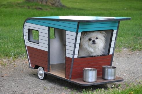 54eba39c40339_-_dog-camper-2-de-23188872