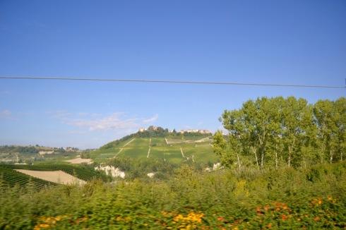 Monforte Alba - 1 (1)